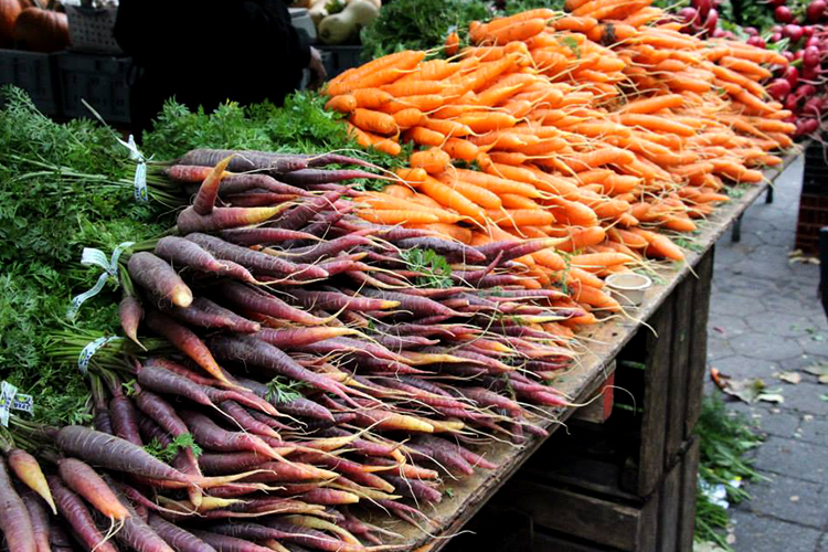 purple and orange carrots at Dag Hammarskjold Plaza Greenmarket